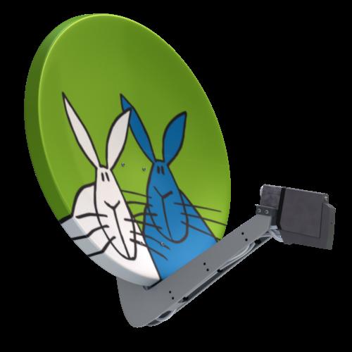 Satellitenantenne Kaninchen